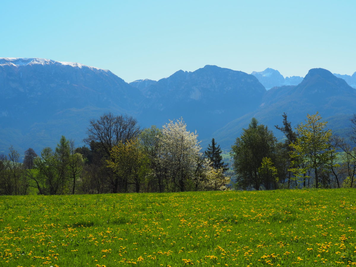 Wunderbares Südtirol