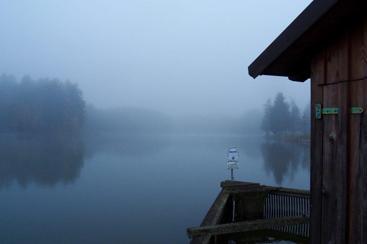 Frost, Nebel und eine Riesenmuschel