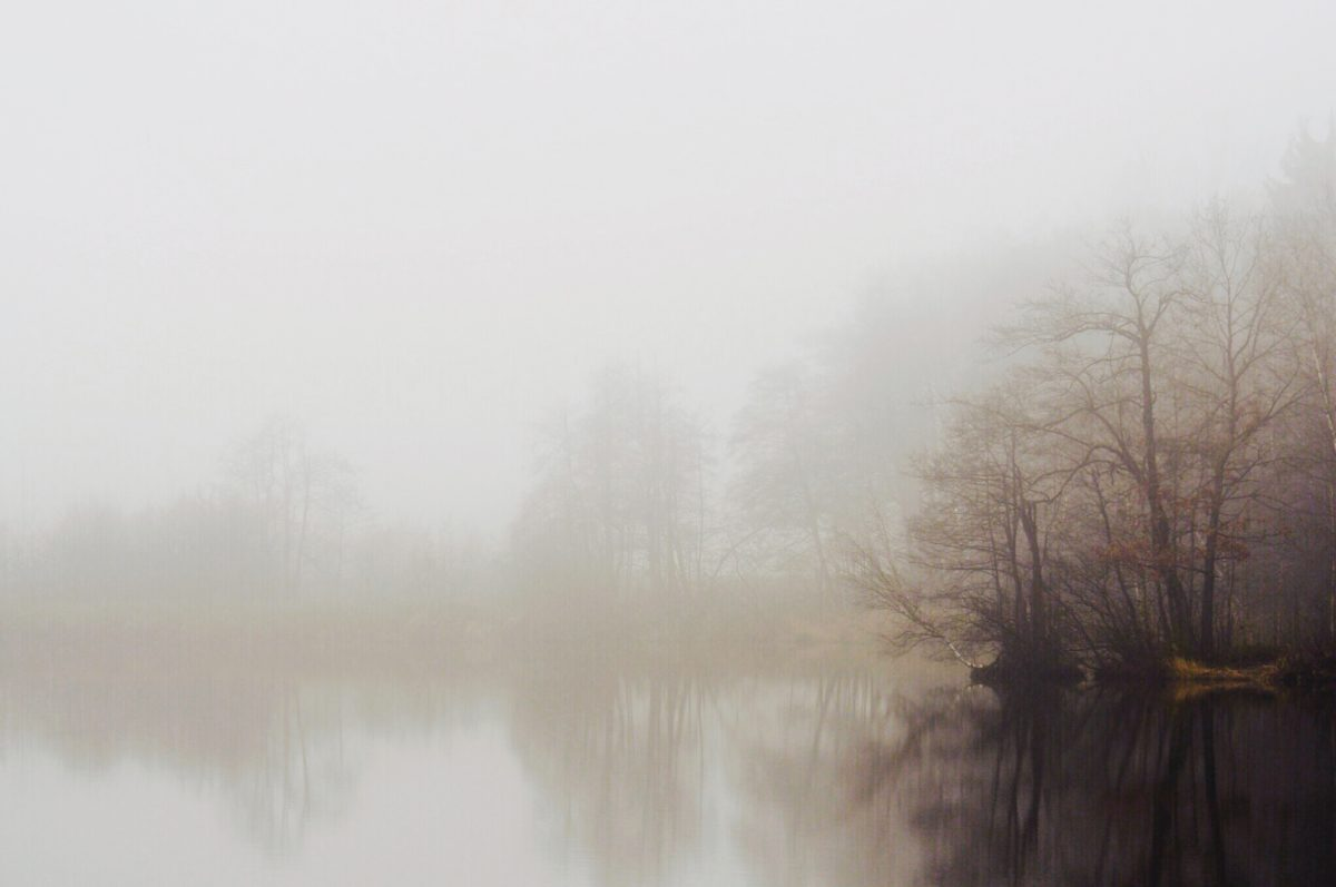 1. Advent, Weihnachtsgeneralprobe und Nebel galore