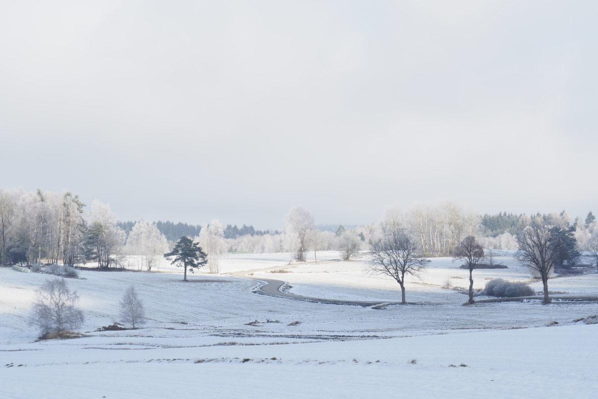 Dezember, Schnee und Frost