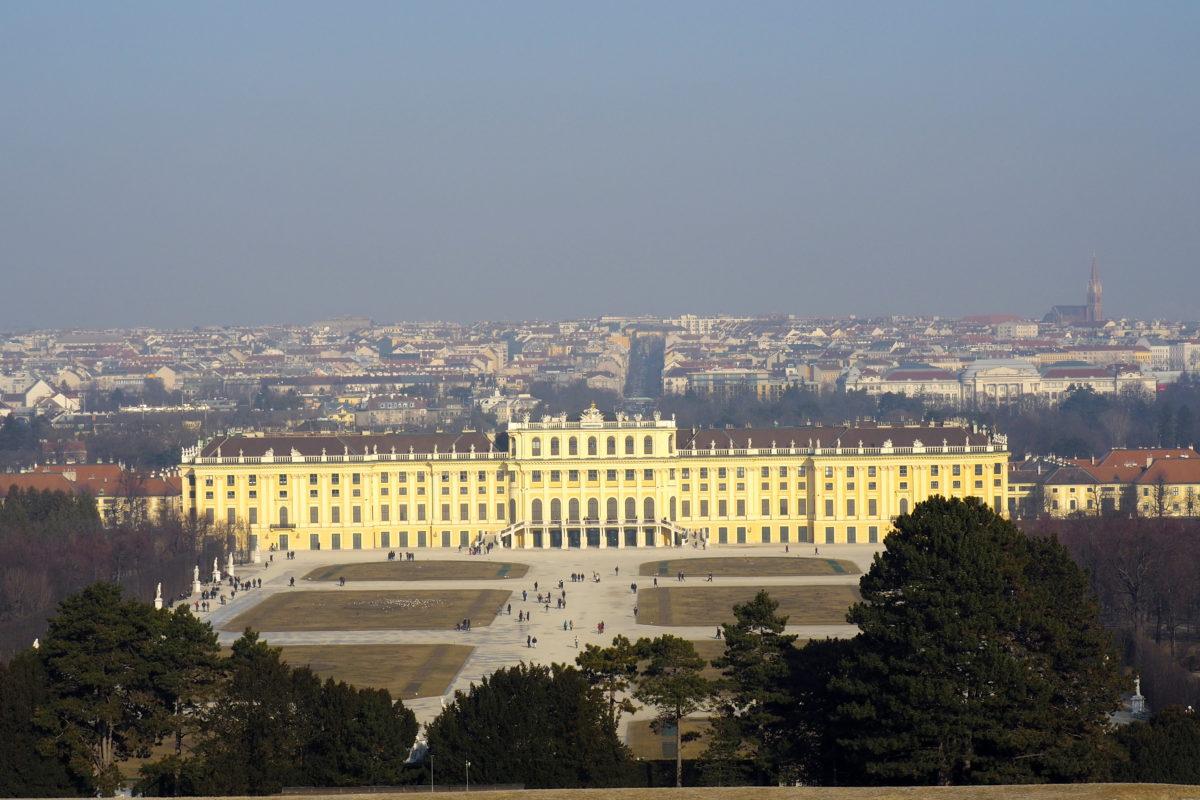 Schnecken, Schönbrunn und Schrebergarten