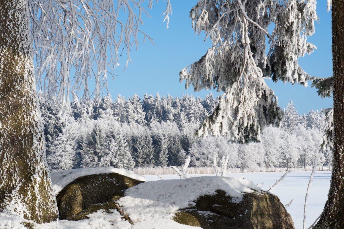 Winter continues … und Langlaufen