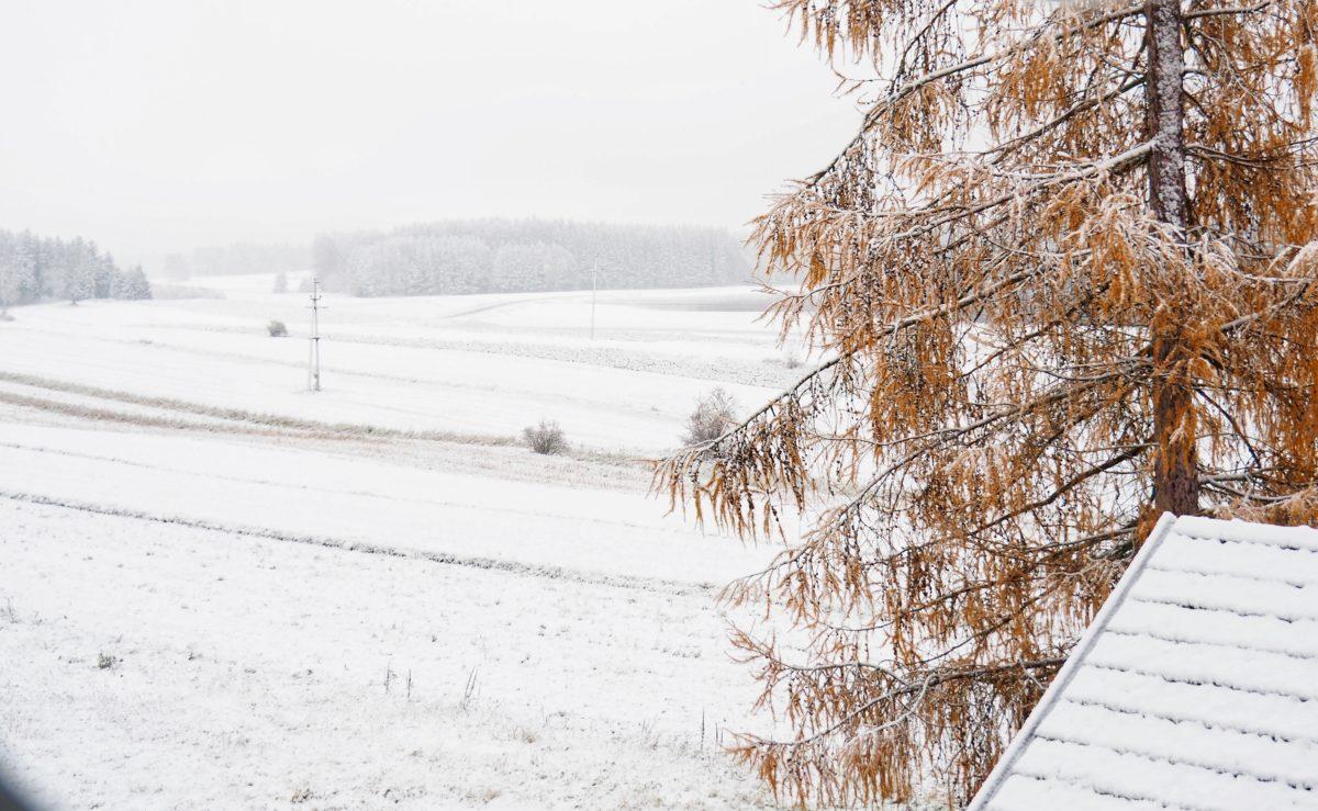 Lichterkette, Weihnachtsklimbim und erster Schnee