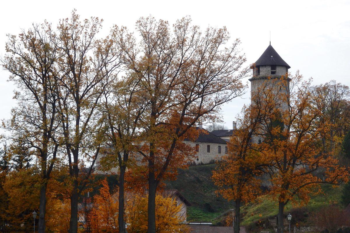 Herbsturlaub, erstes Gansl und Geburtstage