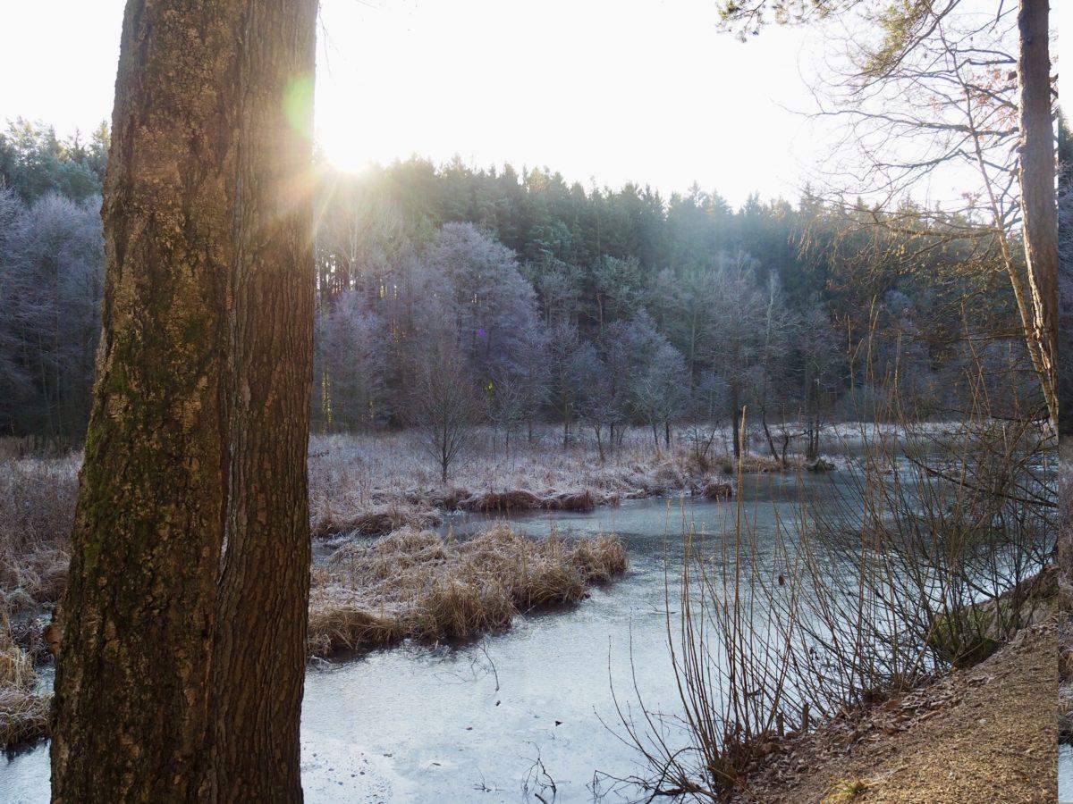 Jahreswechsel, Eisschwimmen und kaum Schnee