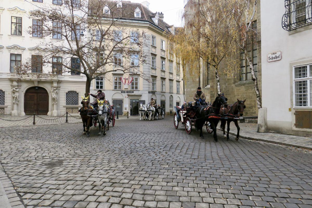 Fiaker, Fisch und Blick über Wien.